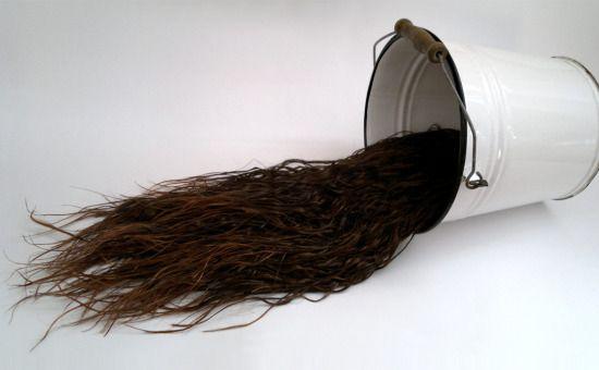 Părul – instrument pentru artă